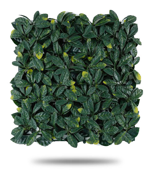 Muro Verde Artificial Follaje Laurel Europeo